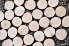 Kuehlschrankmagnete-aus-Holz-10