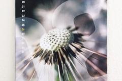 Wandkalender-A3-hoch-08